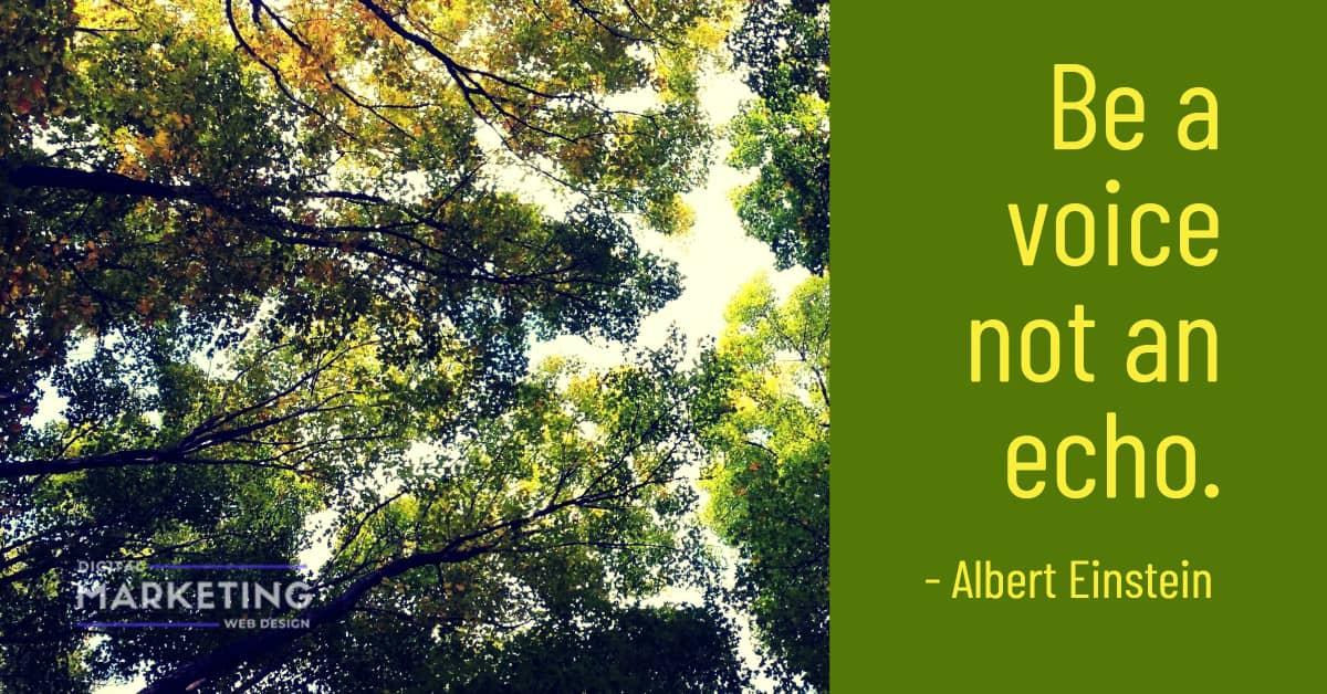 Be a voice not an echo - Albert Einstein 1