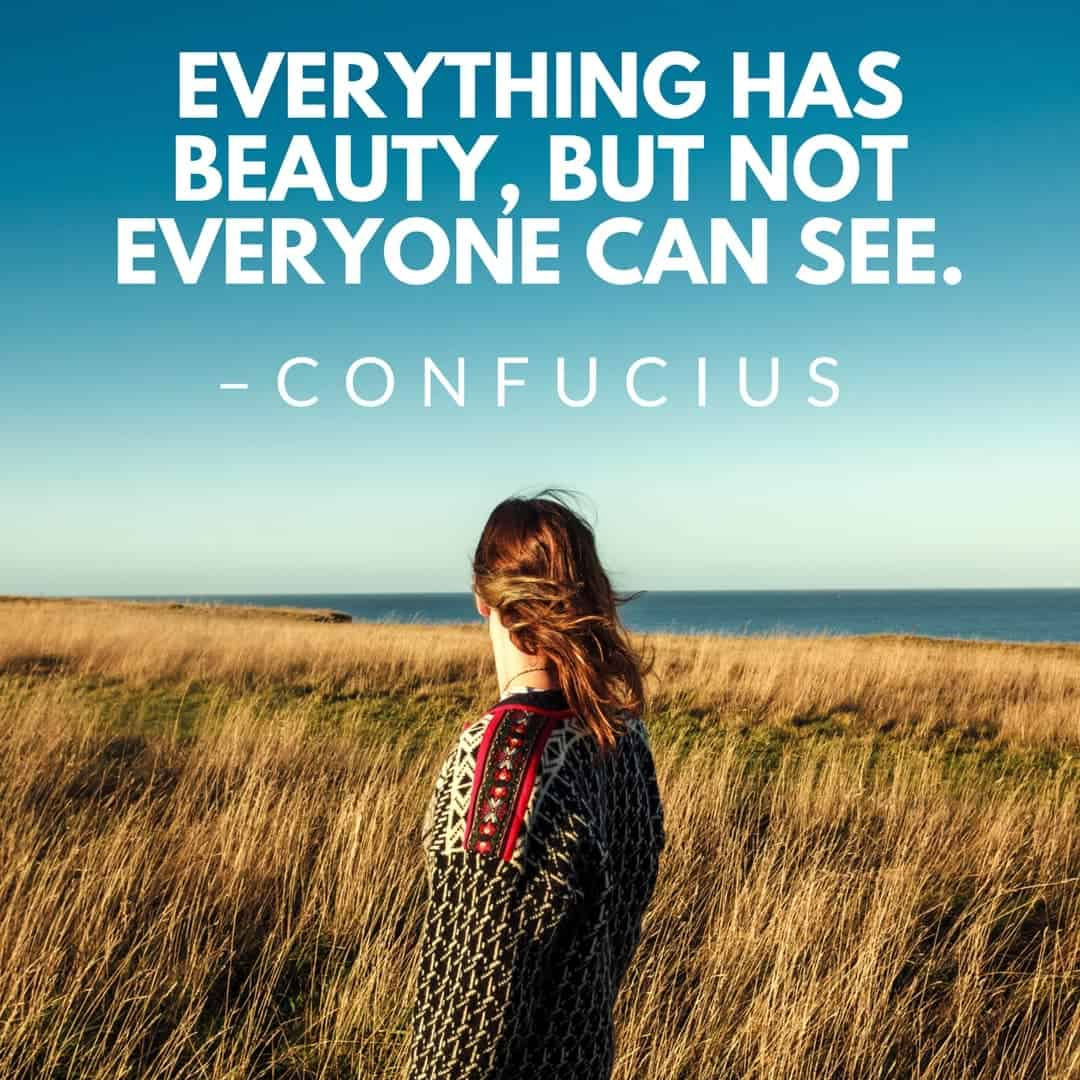 Everything has beauty, but not everyone can see. –Confucius