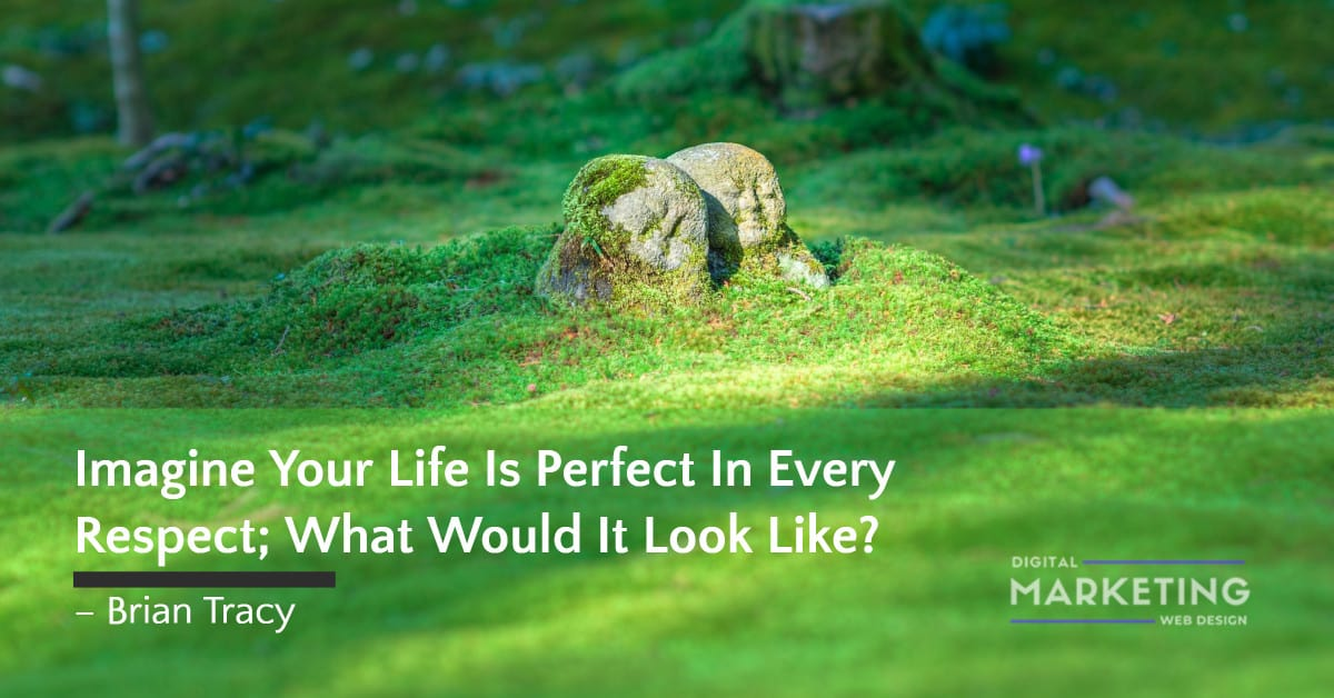 Imagine Your Life Is Perfect In Every Respect; What Would It Look Like? – Brian Tracy 1
