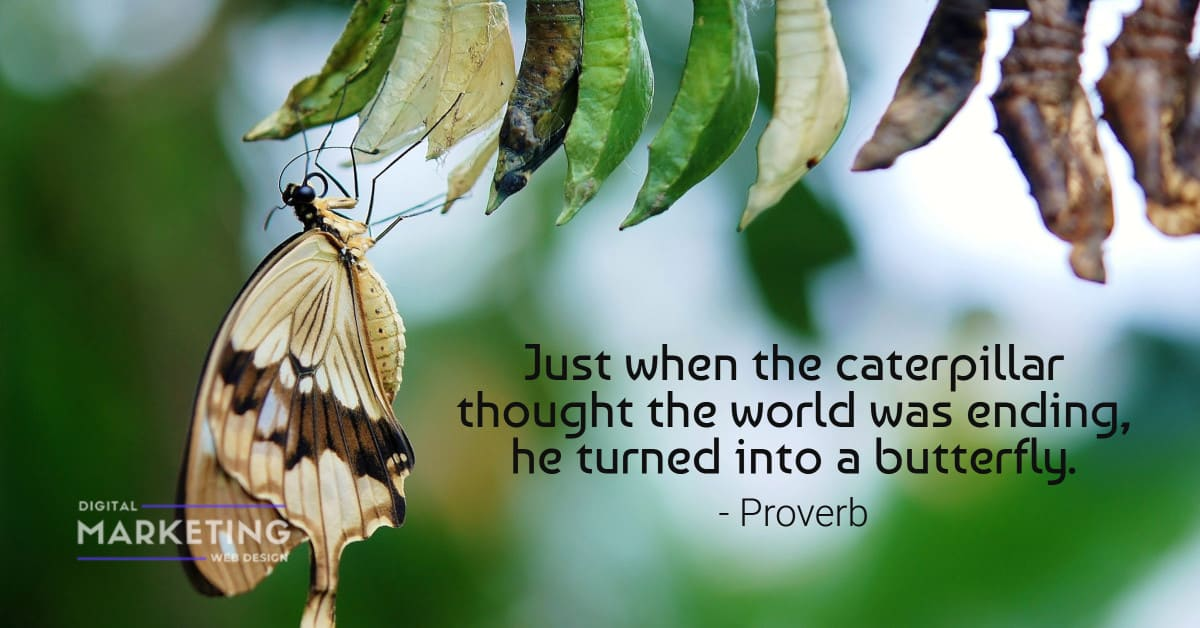 Just when the caterpillar thought the world was ending, he turned into a butterfly - Proverb 2