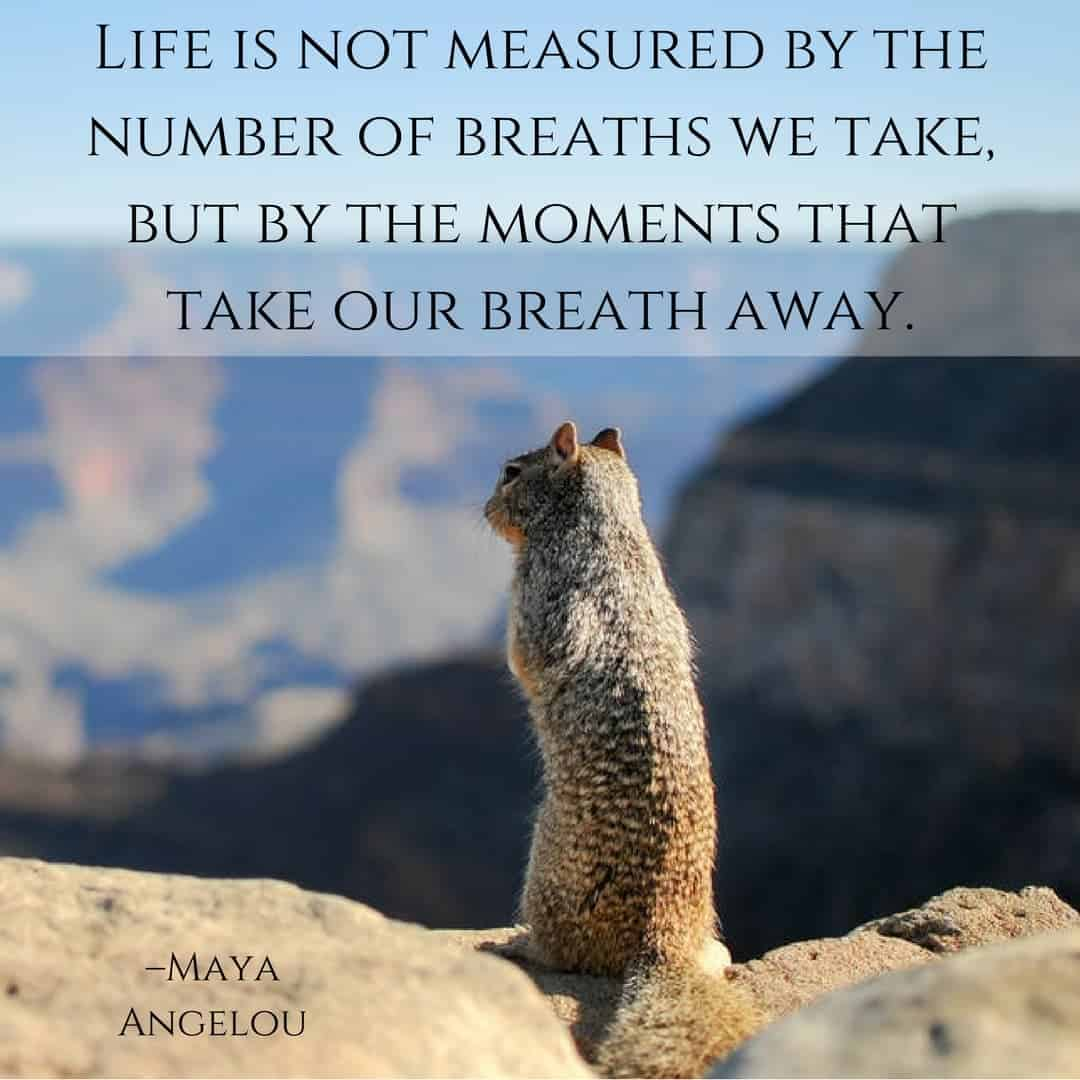Life is not measured by the number of breaths we take, but by the moments that take our breath away. –Maya Angelou