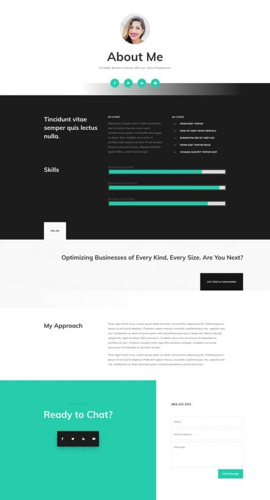 Professional CV Web Design 1