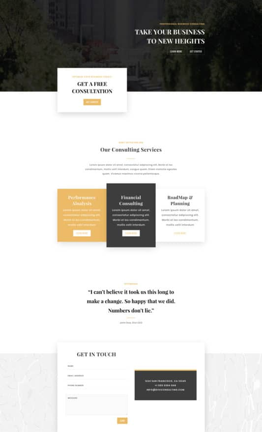 Business Consultant Web Design 5