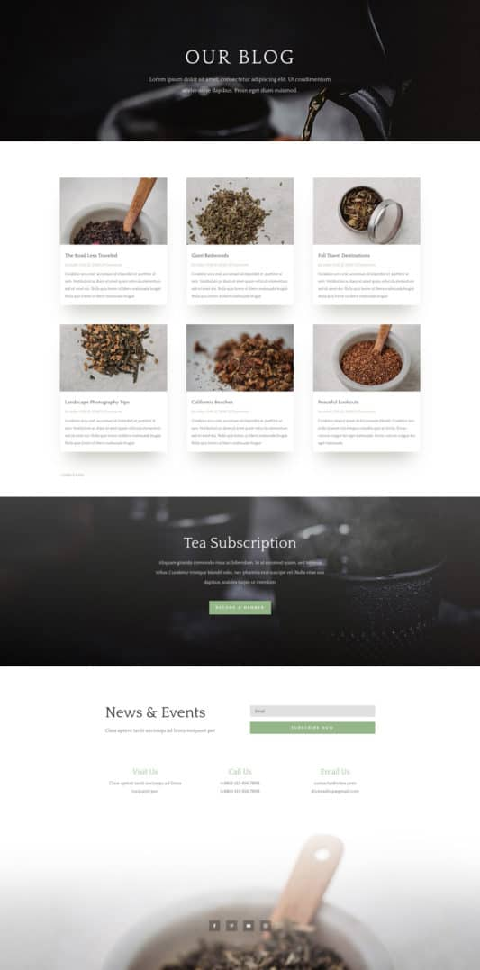 Tea Shop Web Design 2