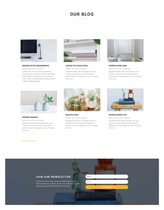 Boutique Web Design 2
