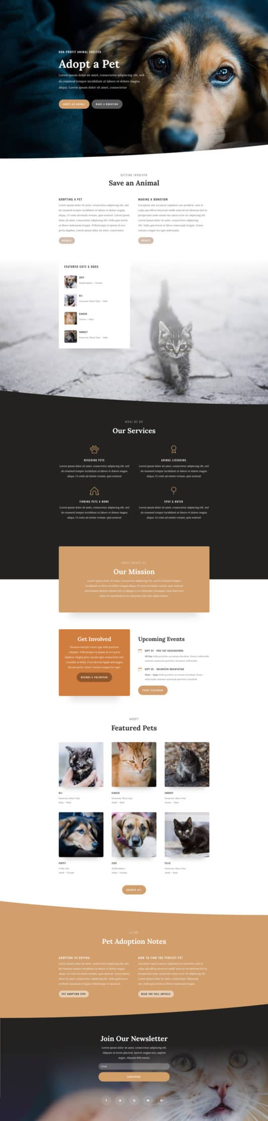 The Animal Shelter Page Style: Homepage Design 1