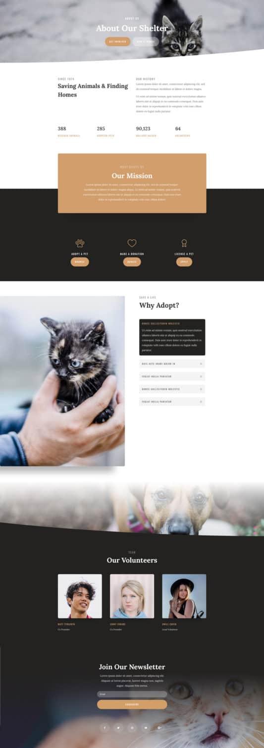 Animal Shelter Web Design 1