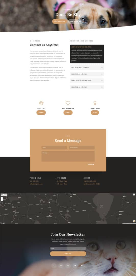 Animal Shelter Web Design 3