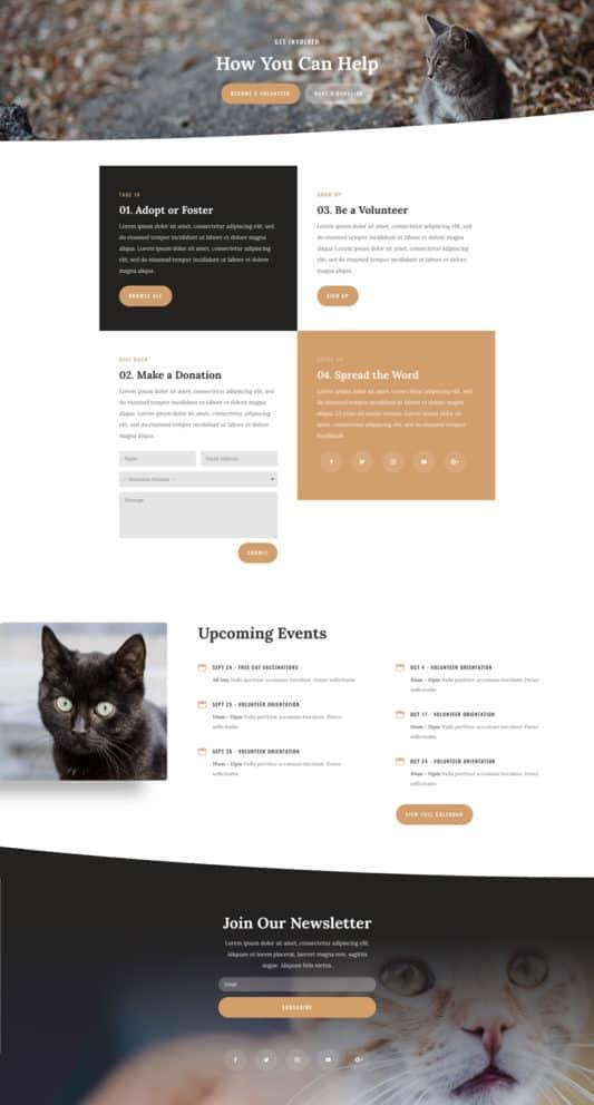 Animal Shelter Web Design 4