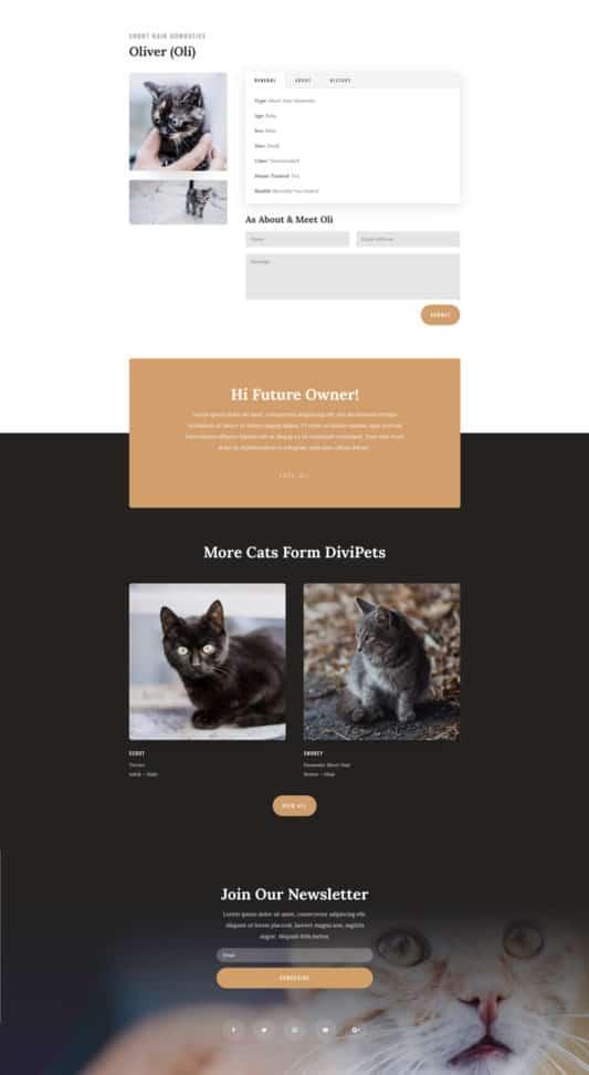 Animal Shelter Web Design 7