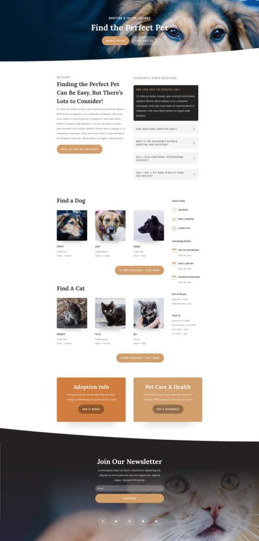 Animal Shelter Web Design 8