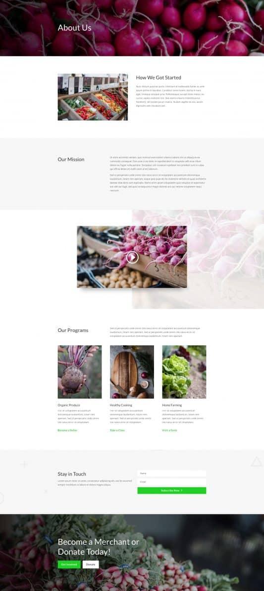 Farmers Market Web Design 1