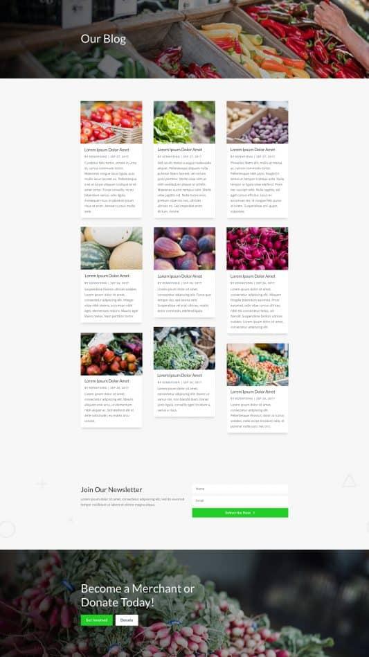Farmers Market Web Design 2