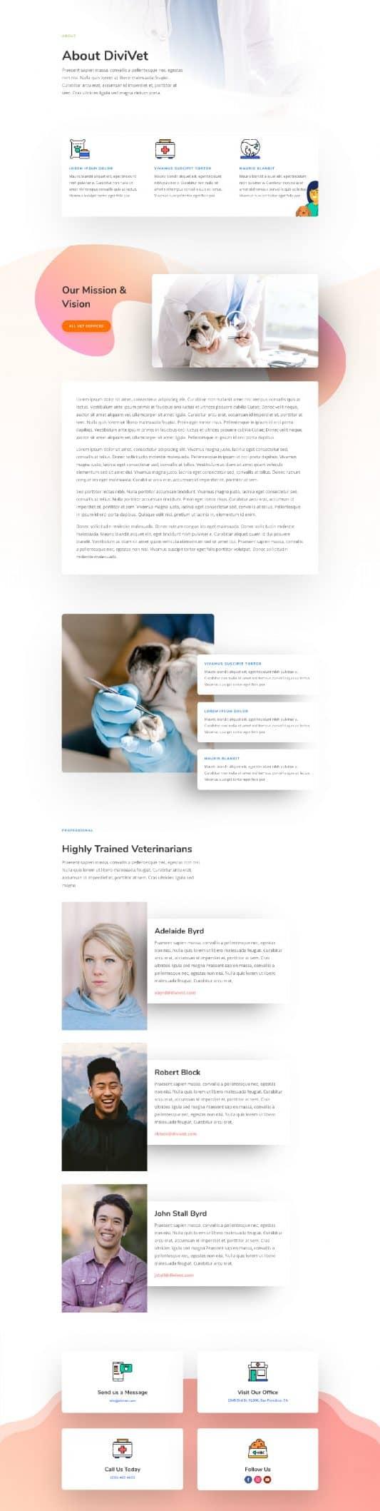 Veterinarian Web Design 1