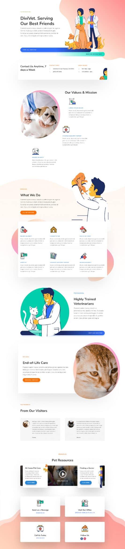 Veterinarian Web Design 5