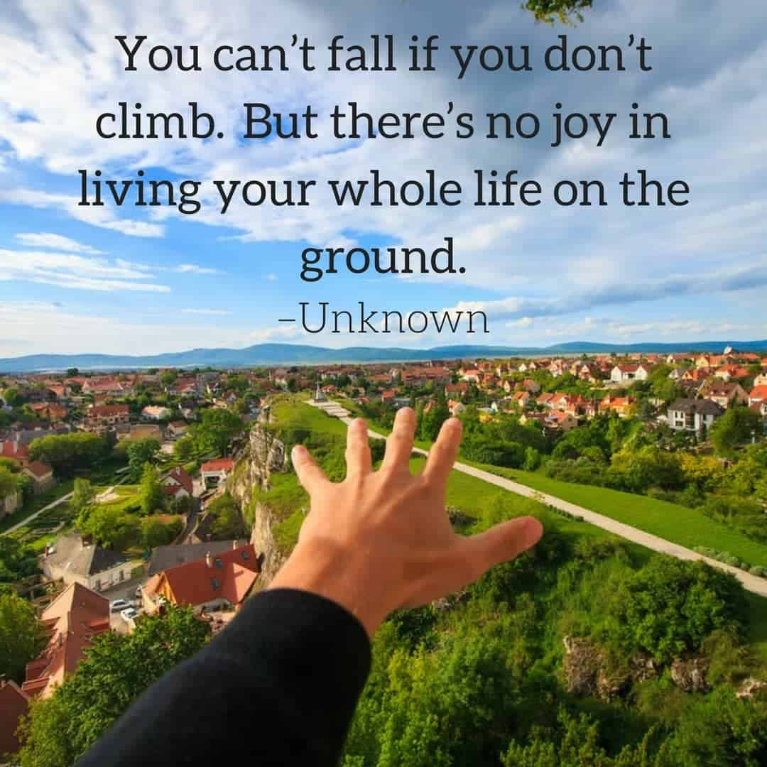 You can't fall if you don't climb. But there's no joy in living your whole life on the ground. –Unknown