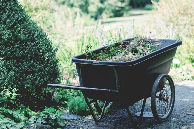 Gardener Home Page Style 15