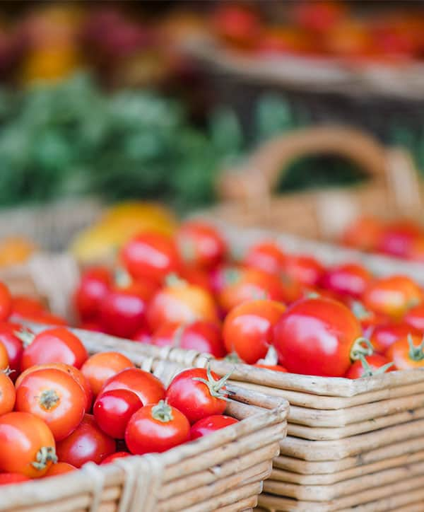 Farmers Market Landing Page Style 7