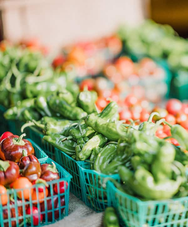 Farmers Market Landing Page Style 8