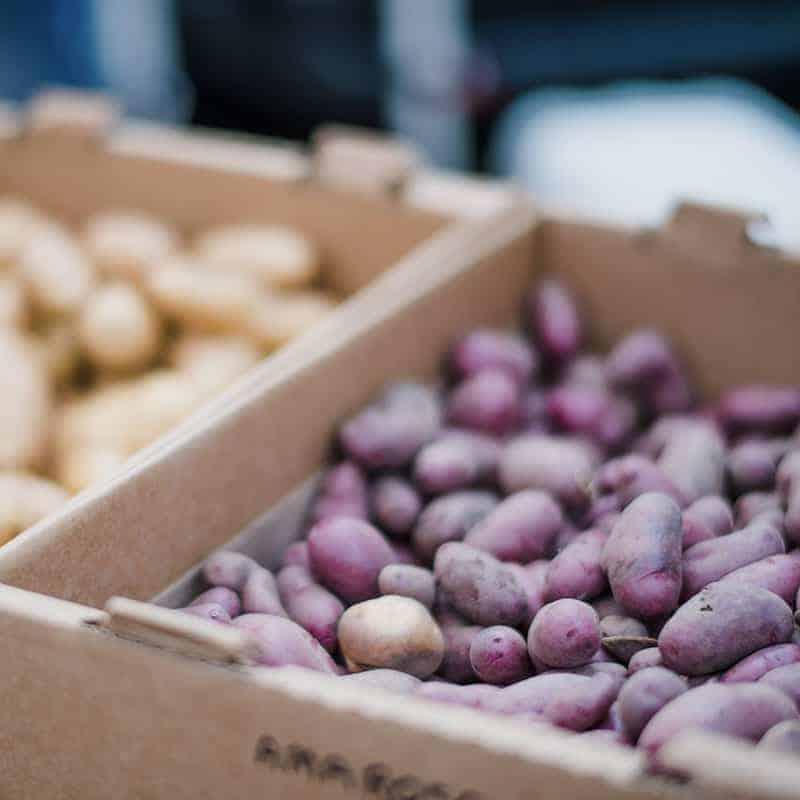 Farmers Market Market Page Style 4